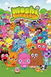 Join the Moshi Monsters World with this Maxi Poster Group Portrait of the Monsters and some of their Moshlings 61cmx91.5cm