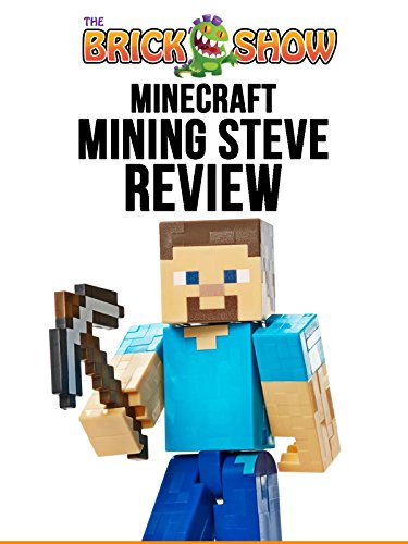 Minecraft Mining Steve Figure Review