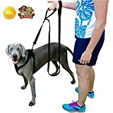 Pet Supplies for Dogs Leashes - Dog Leash Handle x 2 - 1 Leash 2 Handles - Dog Training Leash - Extra Strong Large Dogs