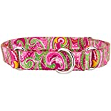 Country Brook Design® Pink Paisley Martingale Dog Collar-M
