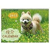 2013年 動物写真ウォールカレンダー (ポメラニアン/俊介)