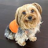 Juicy Orange Dog Shirt Medium