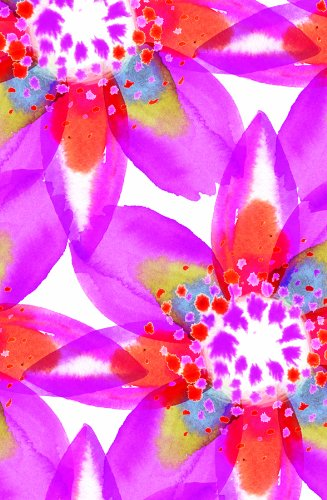 The Gift Wrap Company Gift Enclosure Cards with Orange Envelopes, 4 Per Pack, Kaleidoscope Floral