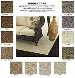 3\'x5\' Birch - HIDDEN TRAIL - Custom Carpet Area Rug - 40 Oz. Tufted, Pinpoint Saxony - Nylon by Milliken (12 Colors to Choose From)