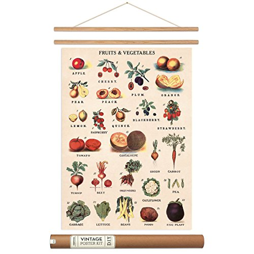 Fruit And Vegetable Poster with Hanger Kit Chart Vintage Style 20 x 28 (Fruit And Vegetables Posters compare prices)