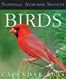 img - for Audubon Birds Gallery Calendar 2014 book / textbook / text book