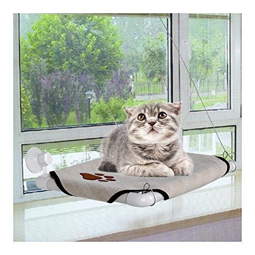 Comfortable Cat Window Mounted Perch Cot Can Be Folded Against Window