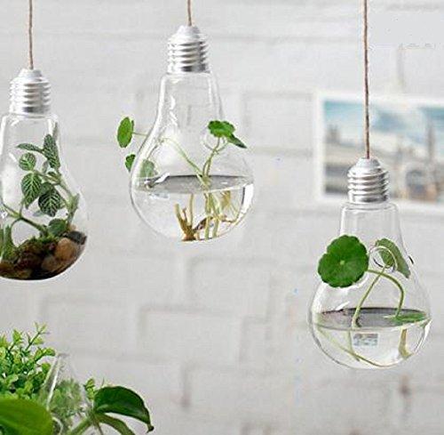 素敵 インテリア 電球 型 フラワーベース 観葉植物 にも (両面 穴 3個セット)