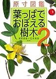 原寸図鑑葉っぱでおぼえる樹木 2 (2)