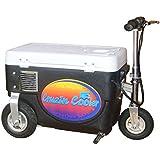 1000 Watt Cruzin Cooler - Scratch & Dent