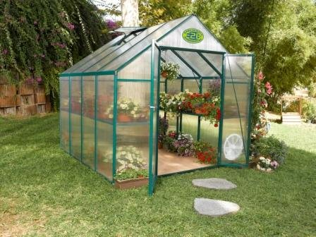 Systems Trading EG45808 Backyard Hobby Greenhouse, Green, 8 By 8 Feet