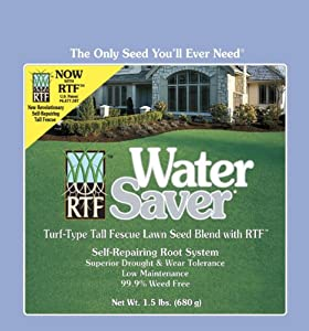 Barenbrug 0-53909-11308-1 Water Saver Grass Lawn Seed Mixture with Turf Type Tall Fescue and RTF, 1.5 Pounds (Discontinued by Manufacturer)