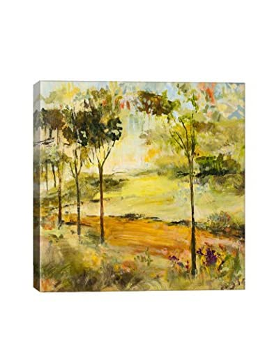 Julian Spencer Scenic Path Gallery-Wrapped Canvas Print