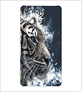 SONY XPERIA M5 TIGER Designer Back Cover Case By PRINTSWAG