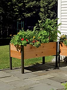 2' x 4' Elevated Cedar Planter Box