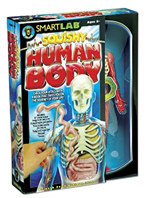 Smart Lab  Squishy You Explore It Human Body from Smart Lab