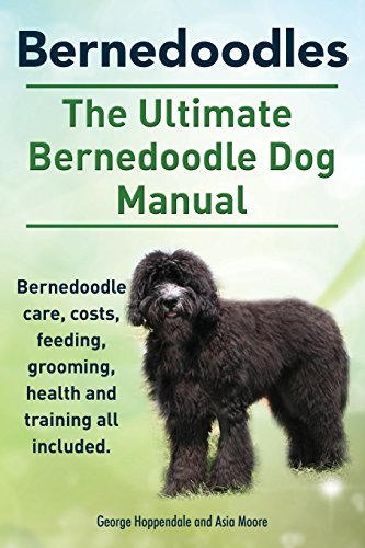 Bernedoodles. The Ultimate Bernedoodle Dog Manual. Bernedoodle care, costs, feeding, grooming, health and training all i