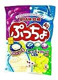 味覚糖 ぷっちょ袋 4種アソート 100g×6袋