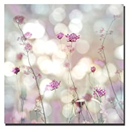 Floral Meadow II by Kate Carrigan Custom Gallery-Wrapped Canvas Giclee Art (Ready to Hang)