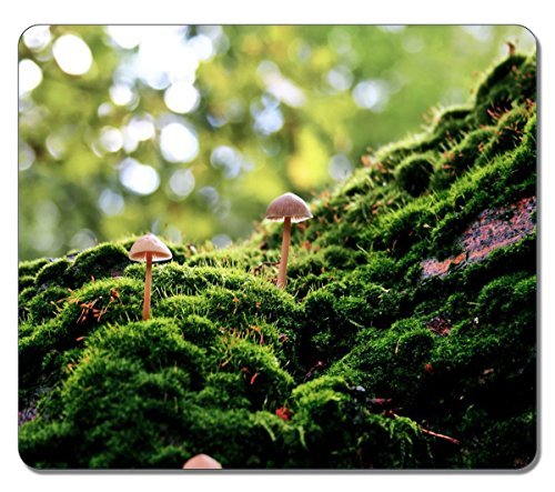 durable-gaming-mouse-pad-mushrooms-in-the-moss-nature-mouse-pad-220mm180mm3mm