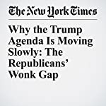 Why the Trump Agenda Is Moving Slowly: The Republicans' Wonk Gap | Neil Irwin
