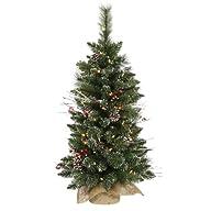 Vickerman B106237 Christmas Trees, 36…