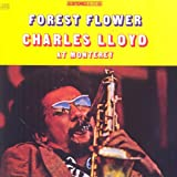 Forest Flower: Live in Monterey
