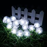 LED16ft 20 LED Solar Outdoor String Fairy Lights Dandelion Ball Solar Power Waterproof String Lights for Outside Garden Camping Patio Party Christmas (Cool White)