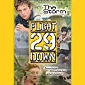 The Storm: Flight 29 Down #4 (       UNABRIDGED) by Stan Rogow, D. J. MacHale Narrated by Joshua Swanson