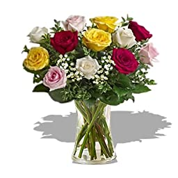 Dozen Premium Long Stem Assorted Roses