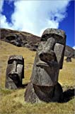 Poster 40 x 60 cm: The strong-featured moai at Rano Raraku on Easter Island by Ric Ergenbright / Danita Delimont - high quality art print, new art poster