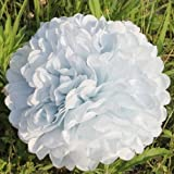 ANKKO 10Pcs Tissue Ball Pom poms Paper Flowers Wedding Party Decoration White