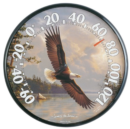 Chaney Instruments Acu-Rite 01738 12.5-inch Eagle Thermometer