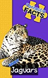 Fantastic Facts About Jaguars: Illustrated Fun Learning For Kids