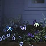 Color-Changing-LED-Dragonfly-Butterfly-Hummingbird-Solar-Garden-Landscape-Lights