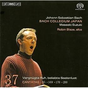 Vergnugte Ruh', beliebte Seelenlust, BWV 170: Aria: Vergnugte Ruh! beliebte Seelenlust! (Alto)
