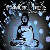 echange, troc Buddha-Bar - Buddhattitude (Buddha Bar Coffret /Vol.1 A Vol.3)