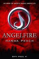 Angelfire: Dark Angel #1 (Dark Angel Saga) (English Edition)