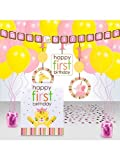 Baby Animals 1st Girl Decoration Kit