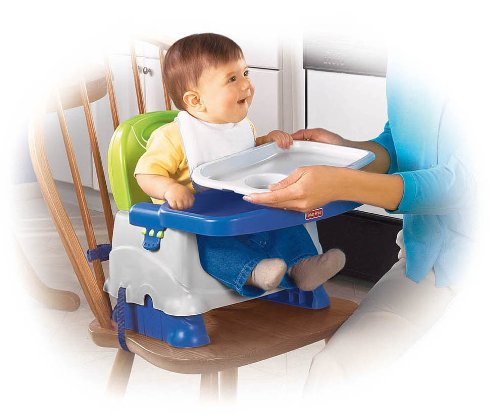 Fisher Price Booster Seat Blue Green Gray