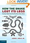 How the Snake Lost its Legs: Curious...