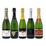 本格シャンパン製法の極上の泡5本セット((W0A5B3SE))(750mlx5本ワインセット)