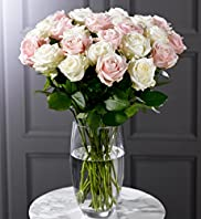 Autograph&#8482; Double Dozen Roses