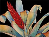 Bromeliad II by Linda Lord Tile Mural for Kitchen Backsplash Bathroom Wall Tile Mural