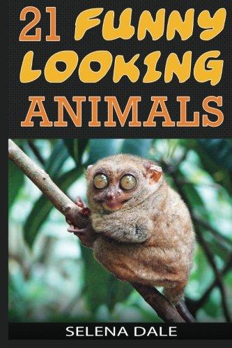 21 Funny Looking Animals: Extraordinary Animal Photos & Facinating Fun Facts For...