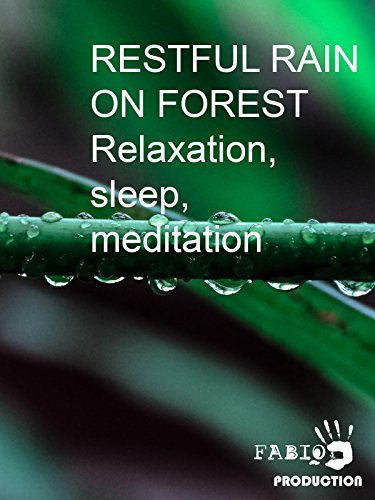 Restful rain on forest. Relaxation, sleep, meditation