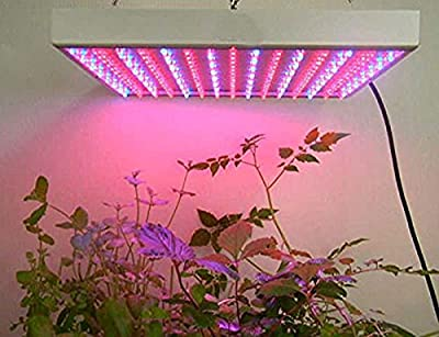 Amzdeal Super Bright 14W 225PCS 3528led Red Blue Grow Led Light ,Plant Grow Light ,Panel Hydroponic Plant Lamp for indoor Hydroponics Flower Vegetable Flower Growing