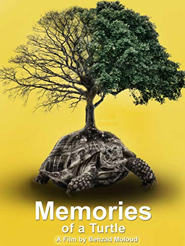 Memories of a Turtle on Amazon Prime Video UK