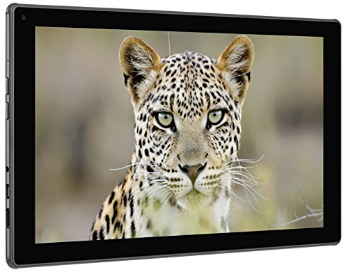 blaupunkt-endeavour-101g-256-cm-101-zoll-tablet-pc-amd-a4-6210-12ghz-hdd-android