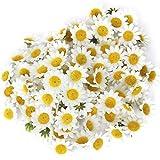 100 Stücke Kunstblumen DIY Künstliche Gänseblümchen Kopf für Hochzeit Dekoration